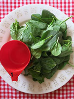 Spinach Bacon Salad